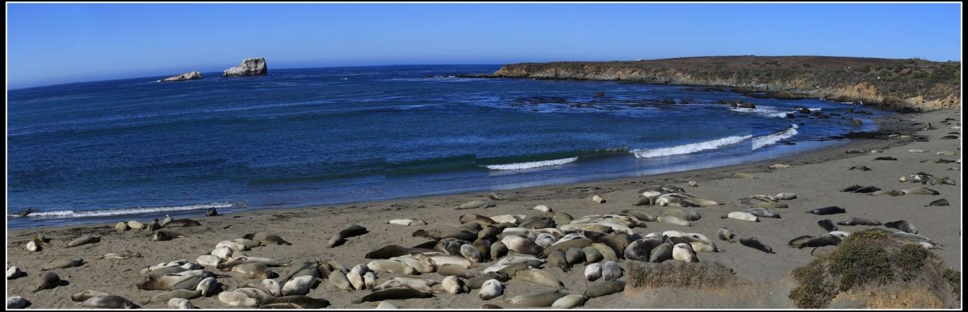 10月加州风光_图1-8
