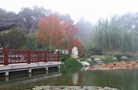 晨雾下的中国苏州园林--流芳园