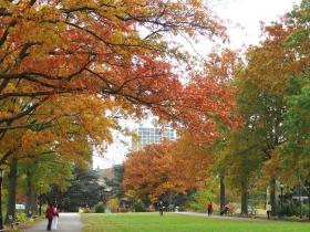 纽约皇后植物园秋意浓