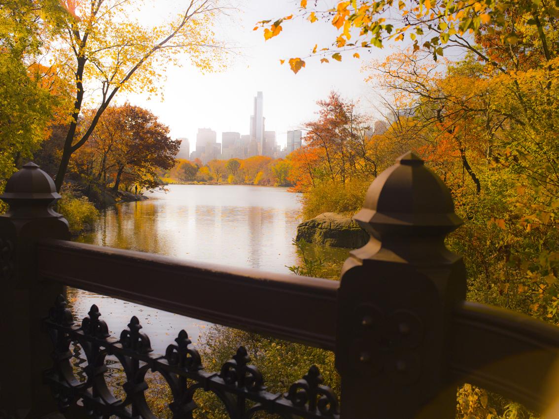 走-拍  纽约景色,_图1-2