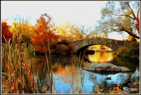 【star8拍攝】秋去冬來的59街中央公園