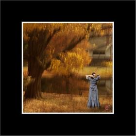 【风】最后的秋色