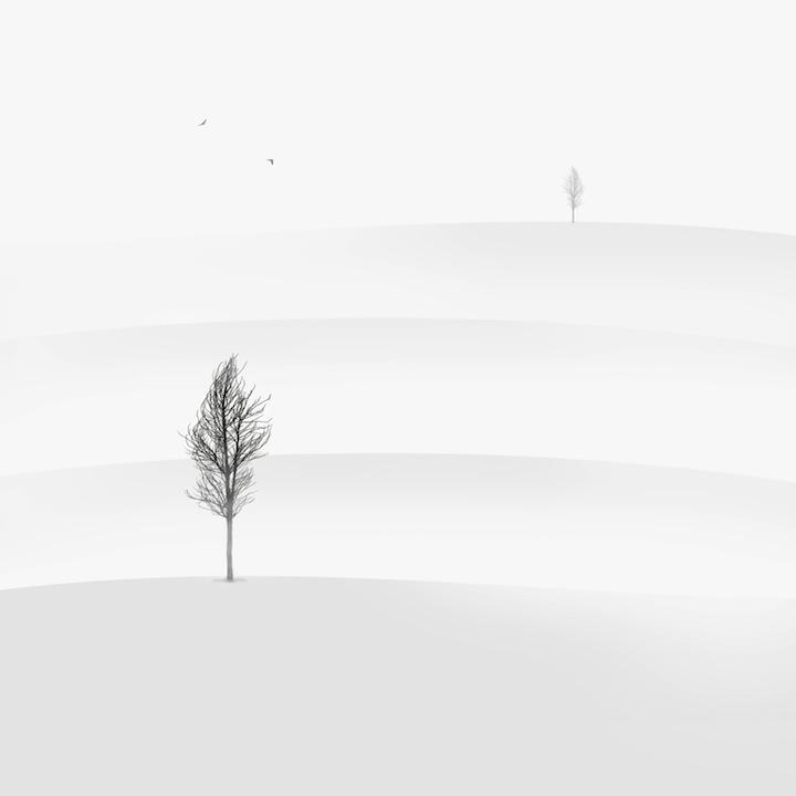【攝影蟲】極簡主義黑白攝影---Hossein Zare_图1-2