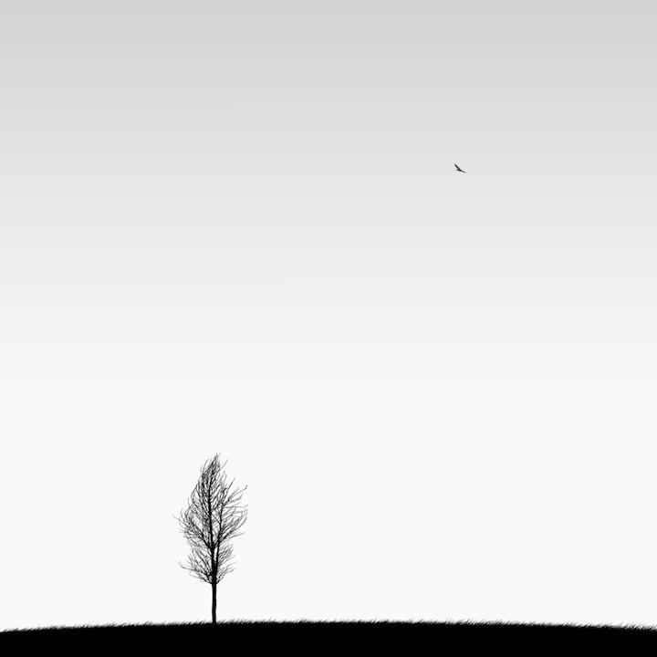 【攝影蟲】極簡主義黑白攝影---Hossein Zare_图1-6
