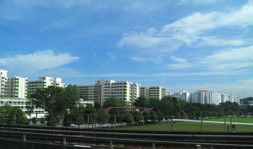 6美刀车费游新加坡_图1-4
