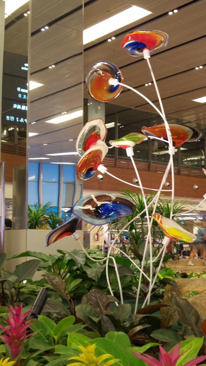 樟宜机场王者香  (手机拍)_图1-10