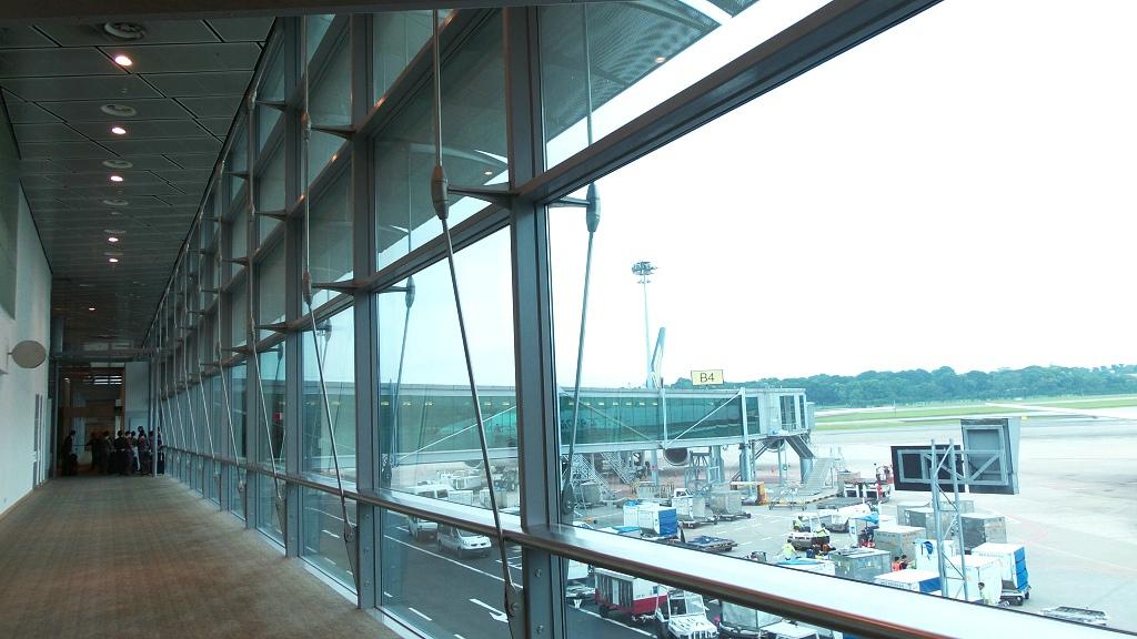 樟宜机场王者香  (手机拍)_图1-18