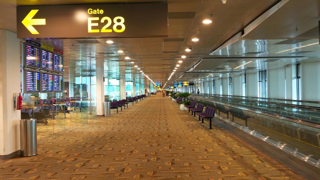 樟宜机场王者香  (手机拍)_图1-19