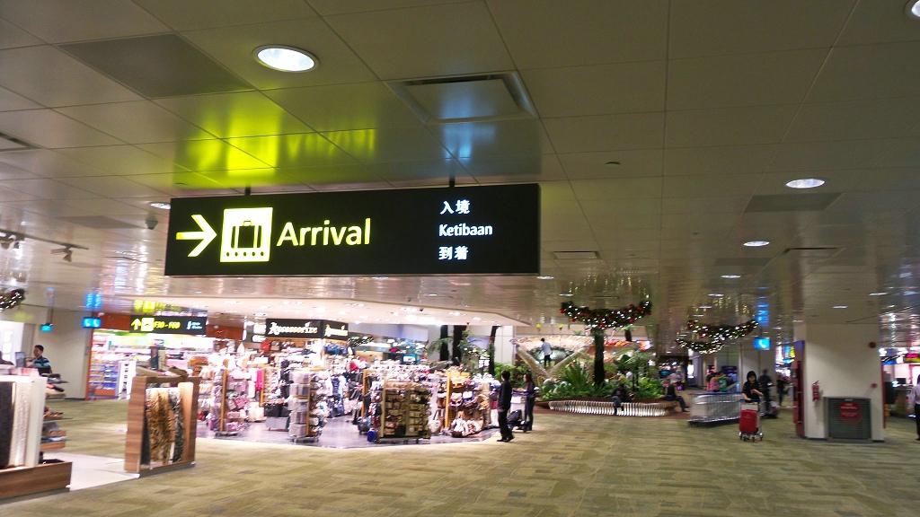 樟宜机场王者香  (手机拍)_图1-20