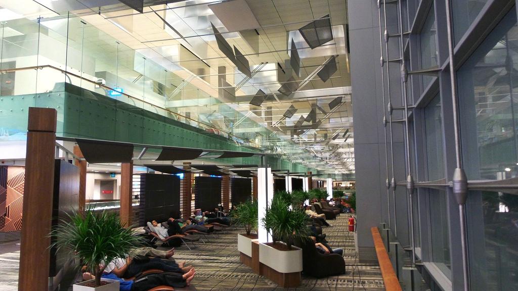 樟宜机场王者香  (手机拍)_图1-50