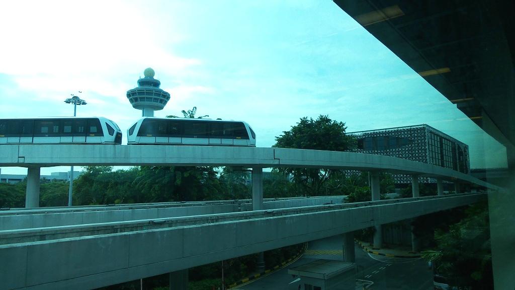 樟宜机场王者香  (手机拍)_图1-60