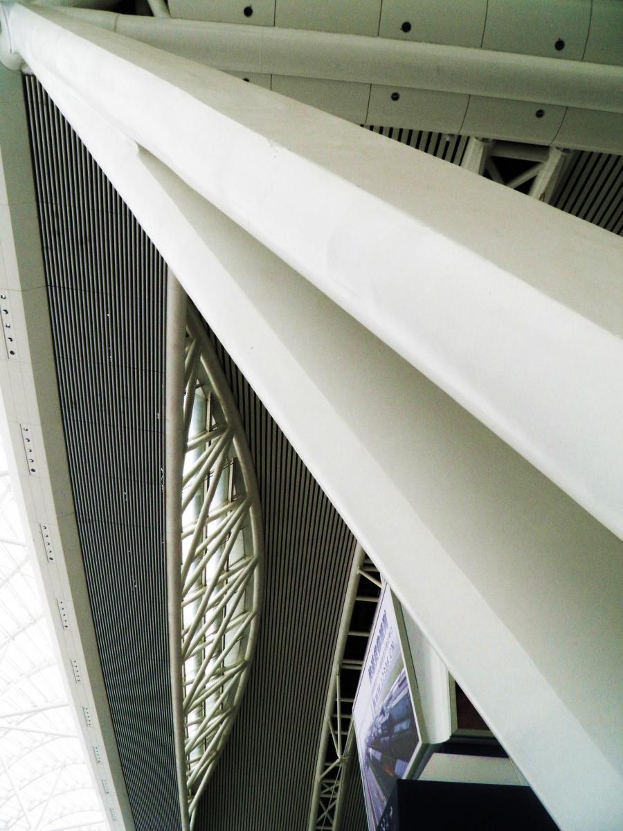 鲸鱼肚里发飞梭-广州南站_图1-9