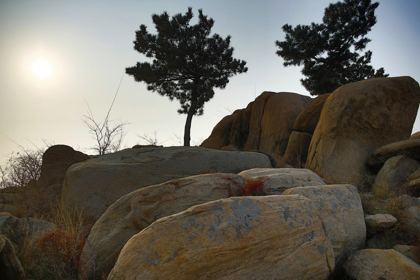 临沂费县有个盆景山     一_图1-19