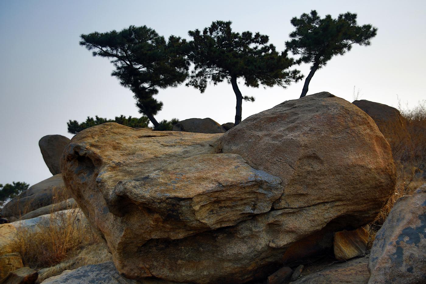 临沂费县有个盆景山     一_图1-14