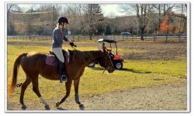 【原創】女騎士與馬(攝影)