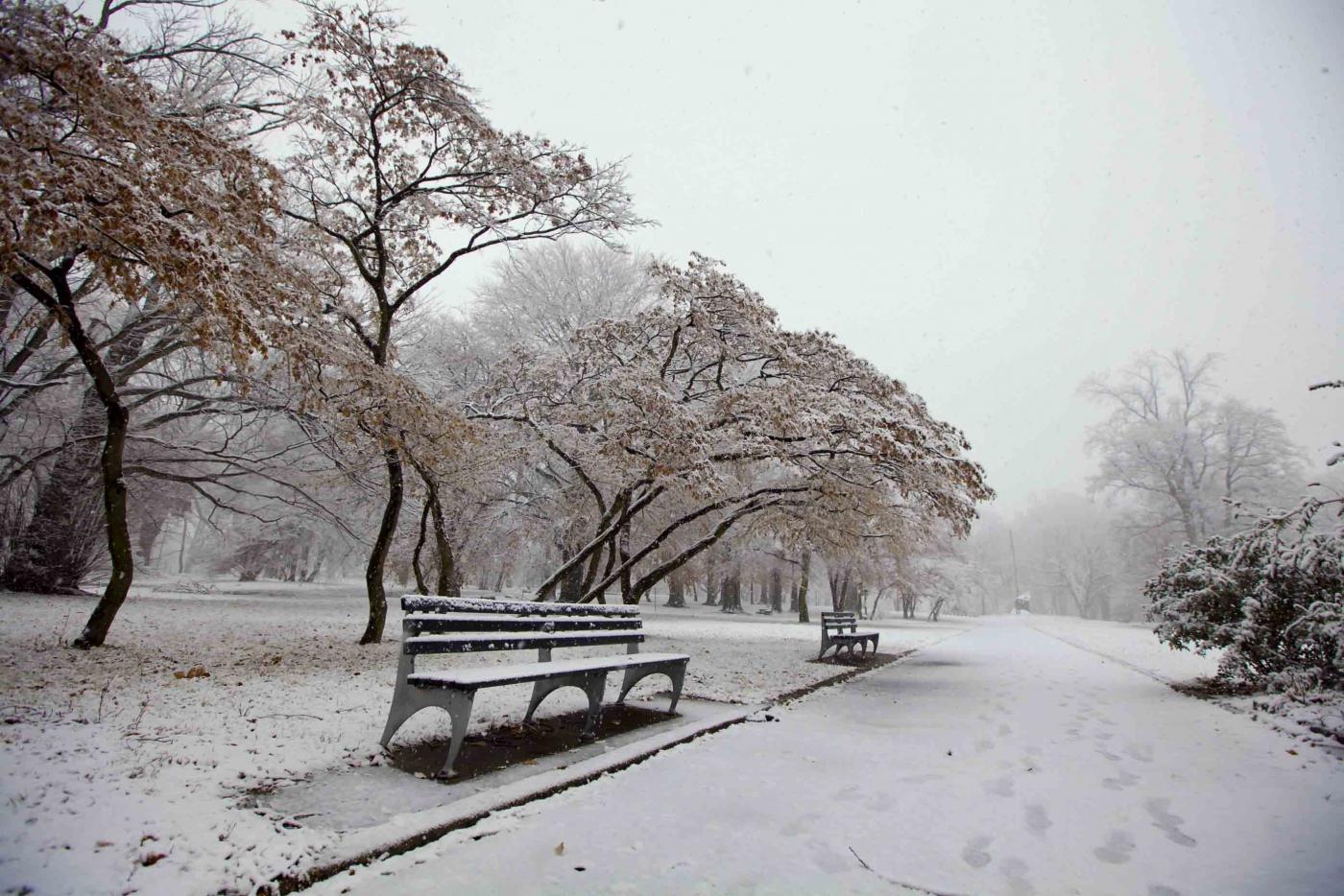雪中即景_图1-2