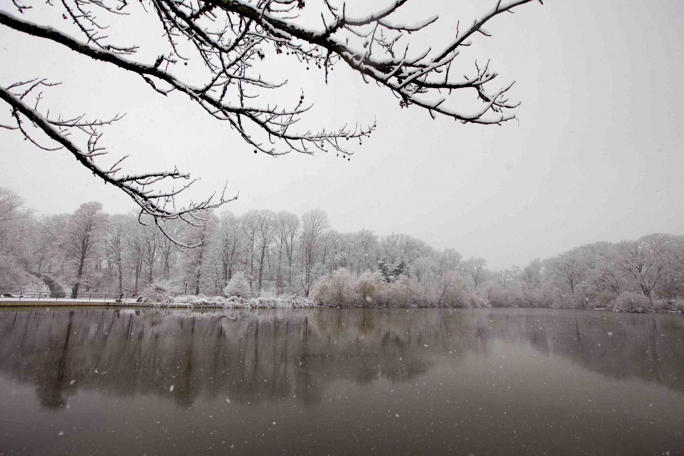 雪中即景_图1-10