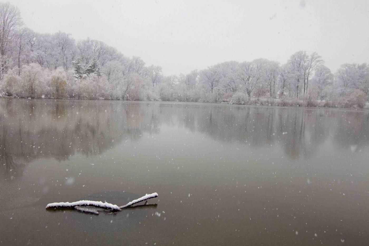雪中即景_图1-11