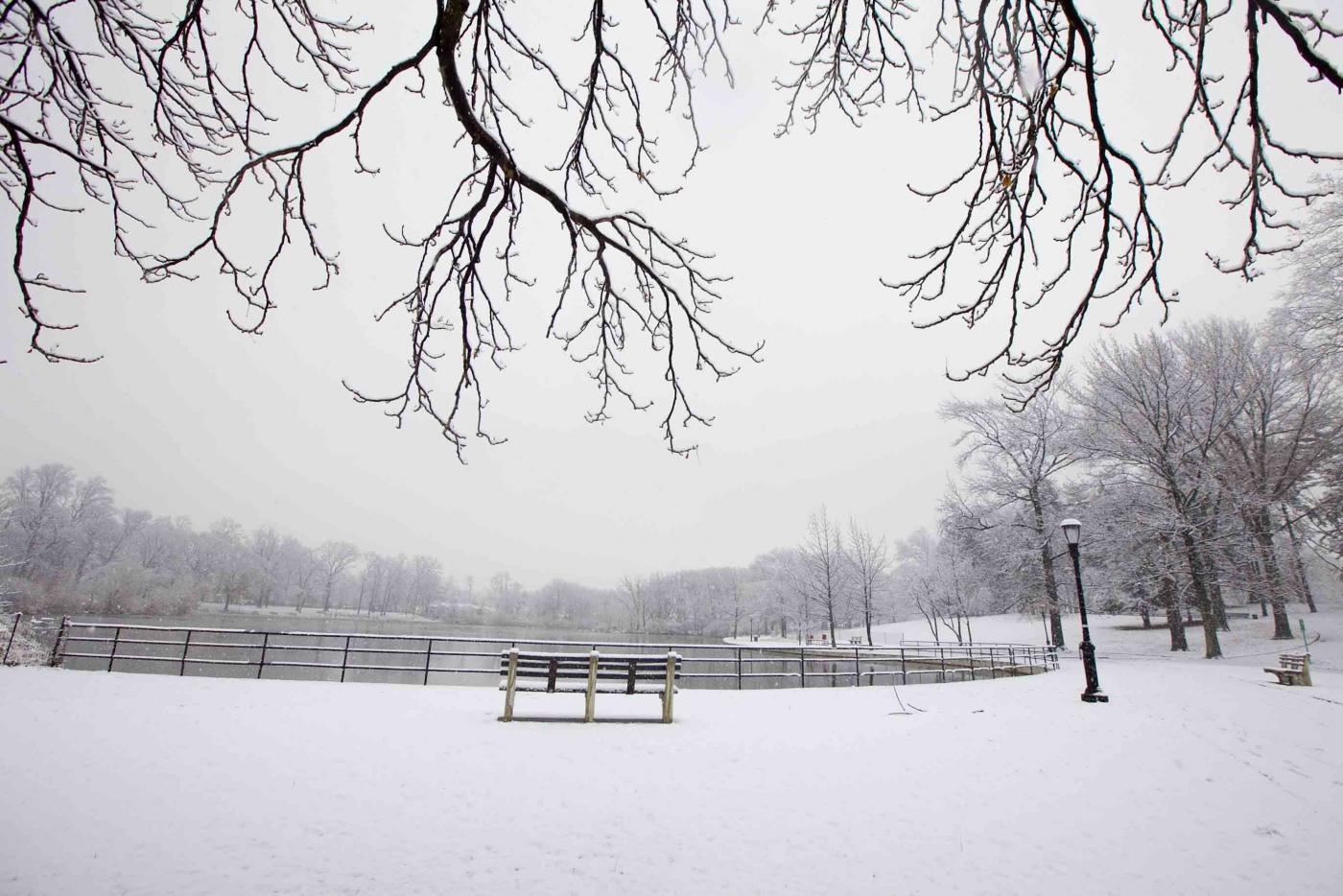 雪中即景_图1-12