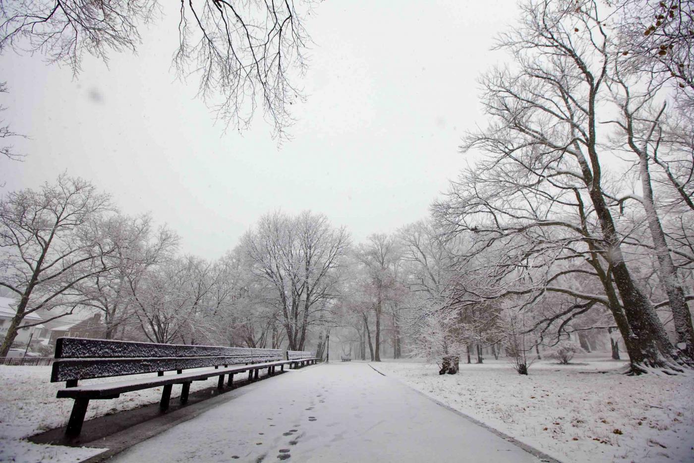 雪中即景_图1-13