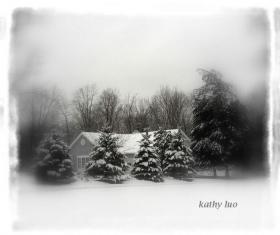 【小虫摄影】圣诞卡的祝福