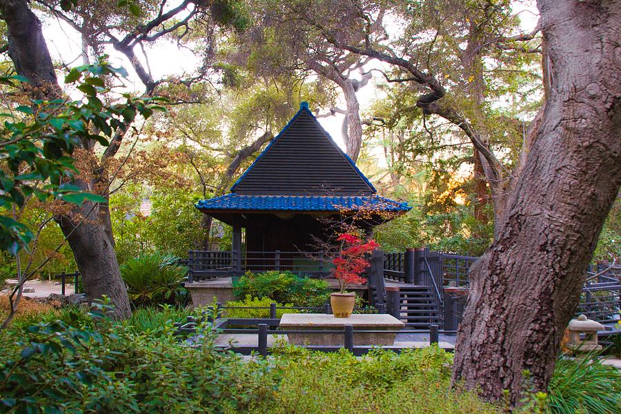 公园里的小小日本园