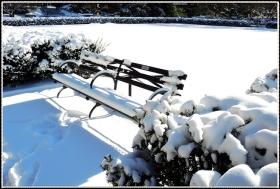 【star8拍攝】2014年的第一場--雪