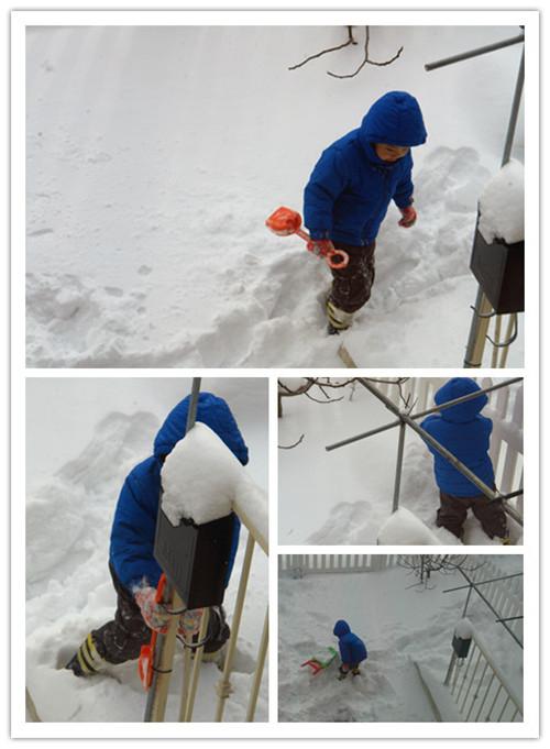 各扫门前雪_图1-5
