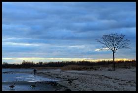 在海边~随拍光与影的相约!