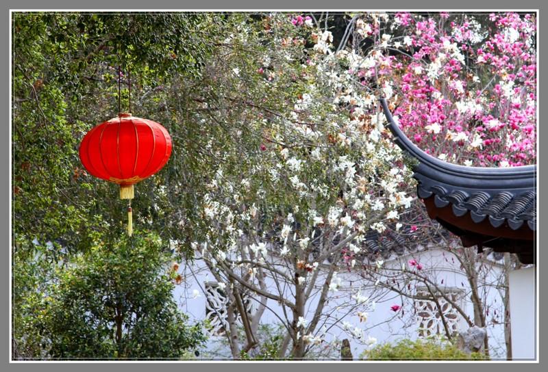 大红灯笼高高挂,马年新春喜洋洋_图1-10