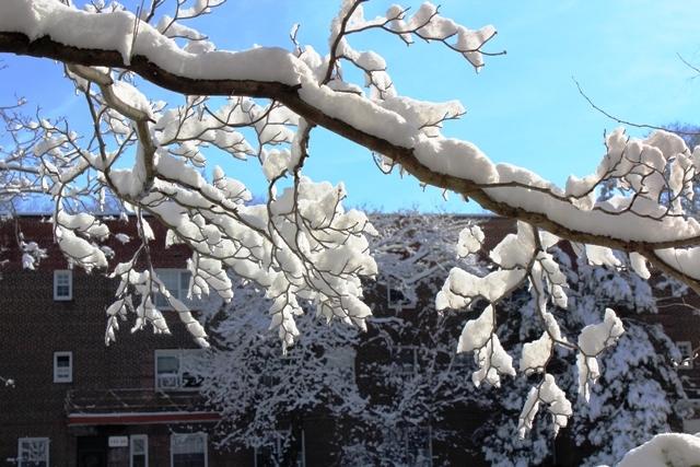 2014 雪景_图1-1