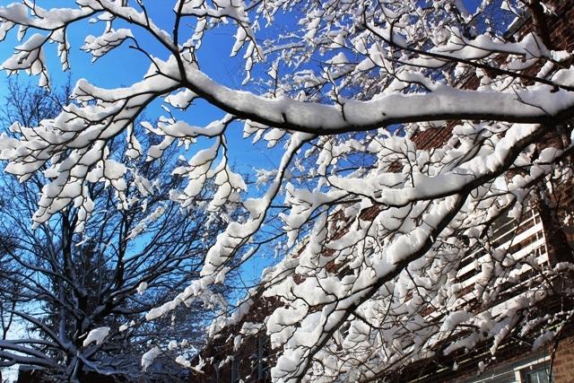 2014 雪景_图1-3