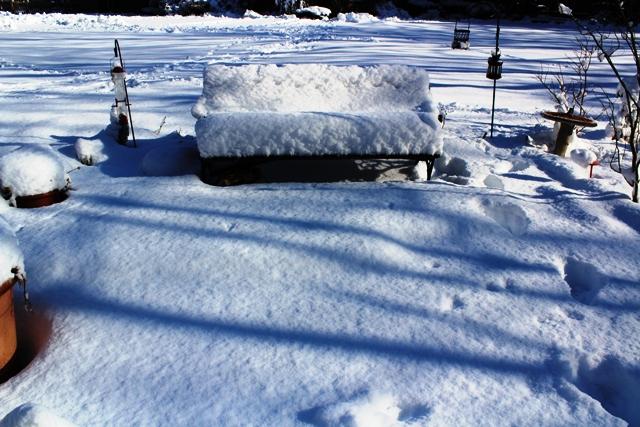 2014 雪景_图1-5