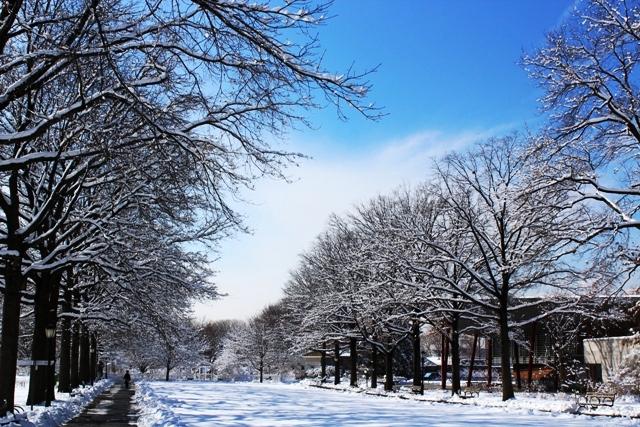 2014 雪景_图1-14