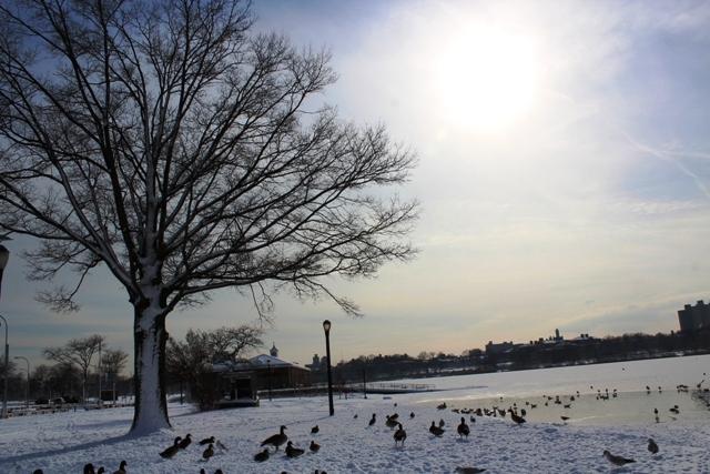 2014 雪景_图1-16