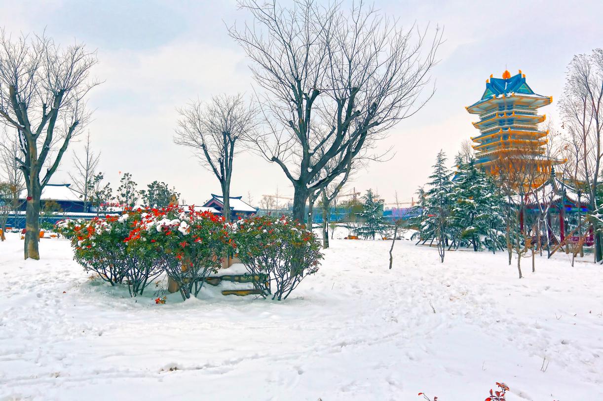 纪念2014年沂蒙大地第一场雪_图1-5