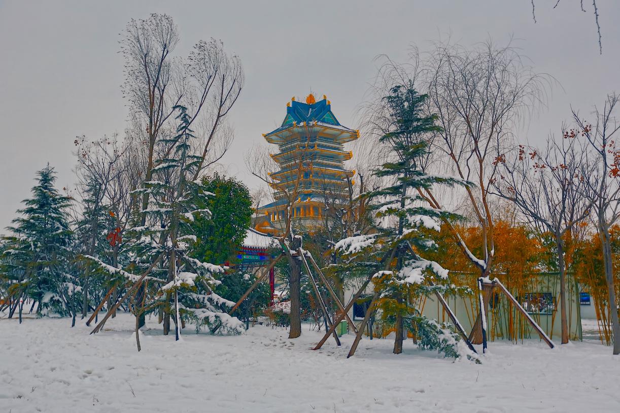纪念2014年沂蒙大地第一场雪_图1-8