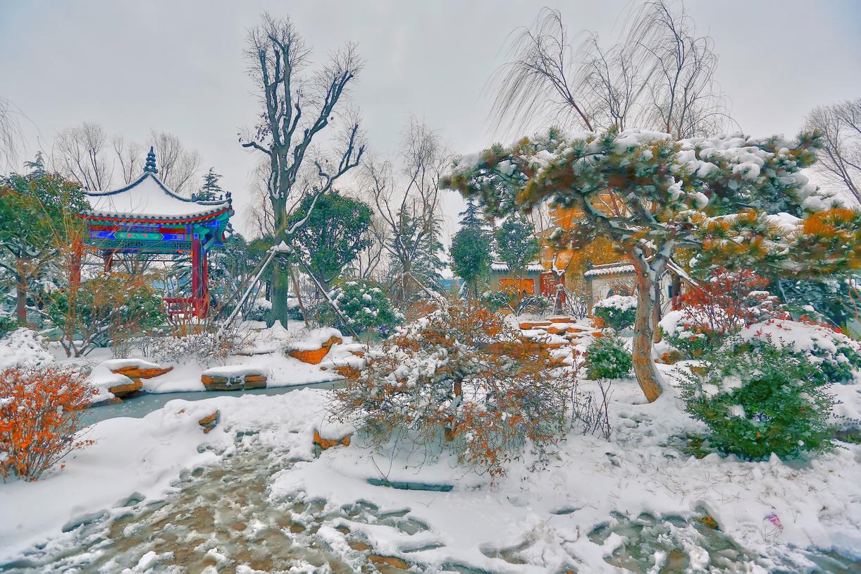 纪念2014年沂蒙大地第一场雪_图1-7