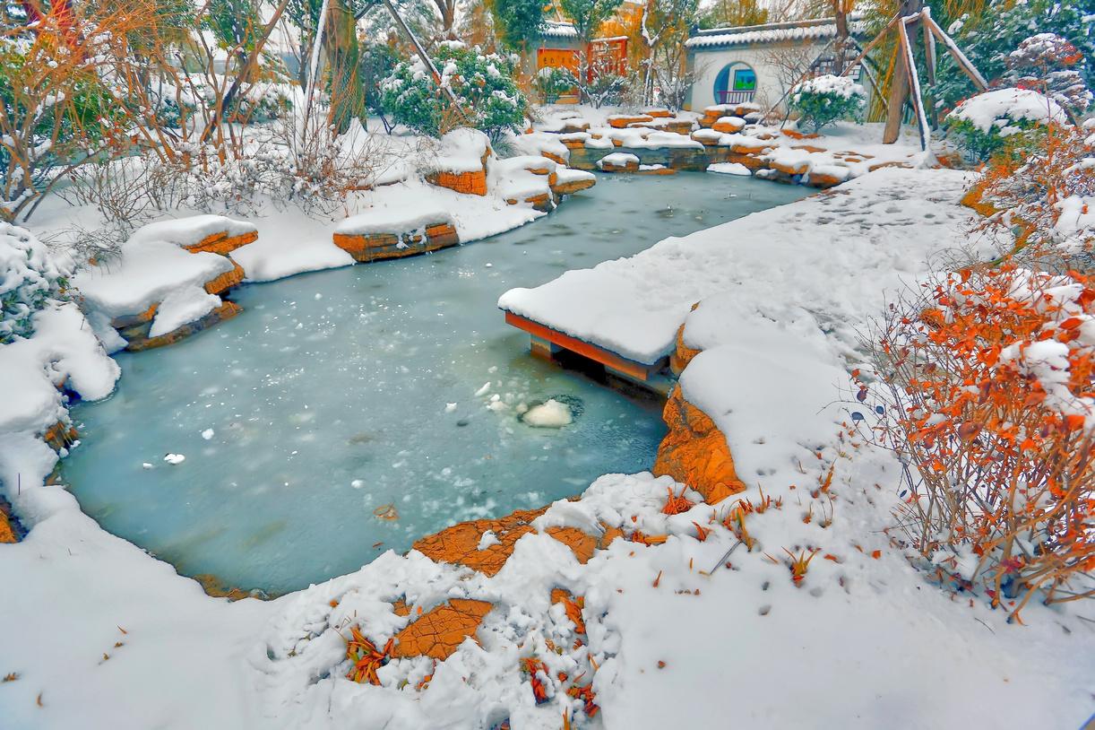 纪念2014年沂蒙大地第一场雪_图1-9