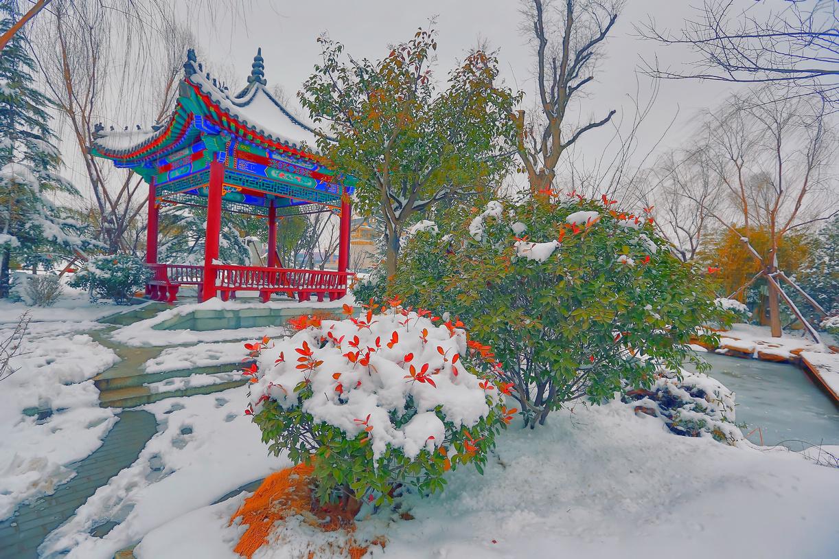 纪念2014年沂蒙大地第一场雪_图1-10