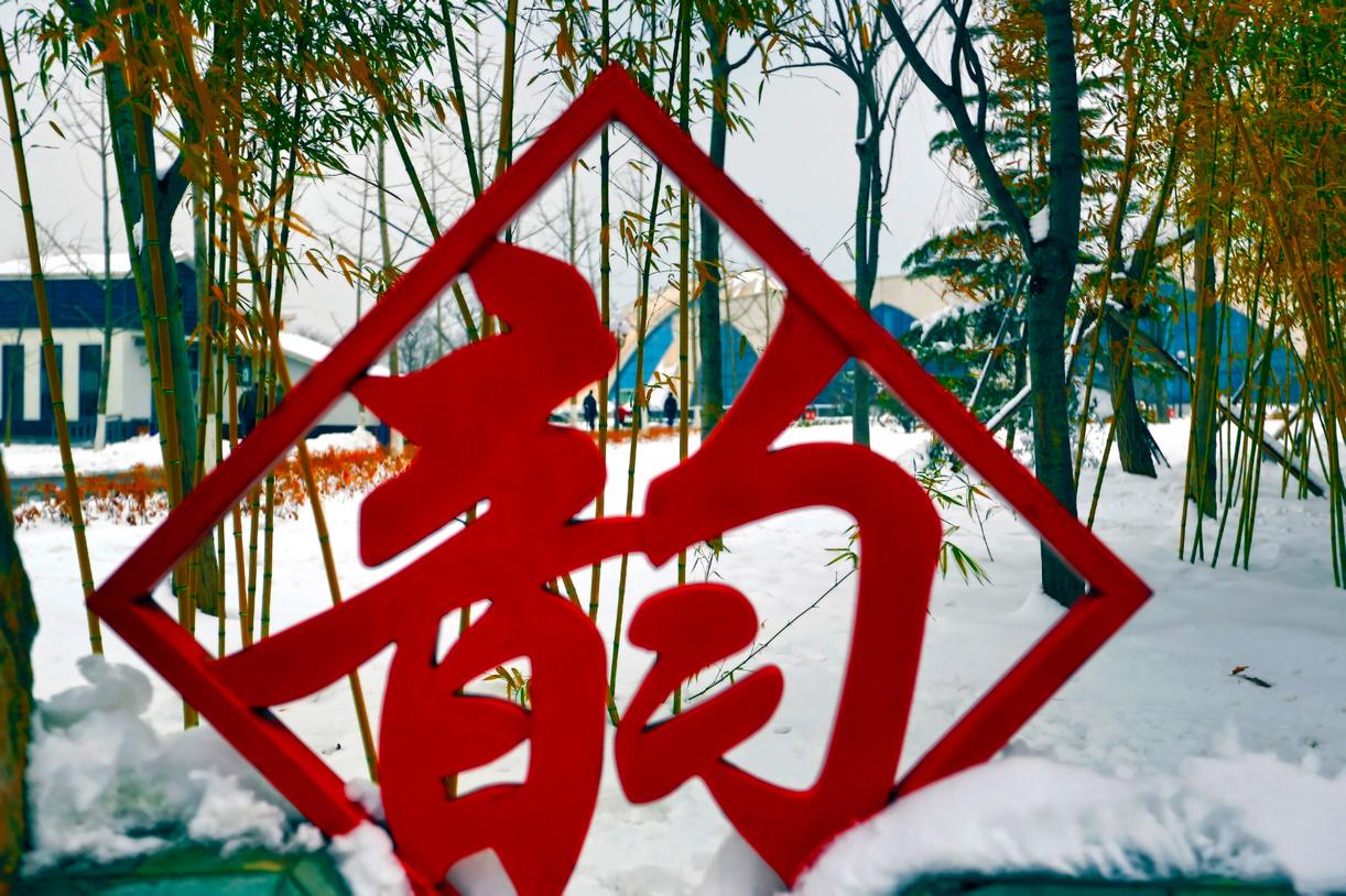 纪念2014年沂蒙大地第一场雪_图1-16