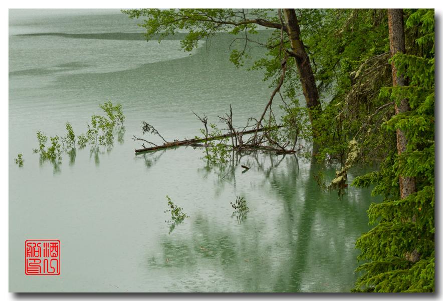 《酒一船》:湖光山色落基行:魔奇湖畔雨纷纷_图1-4