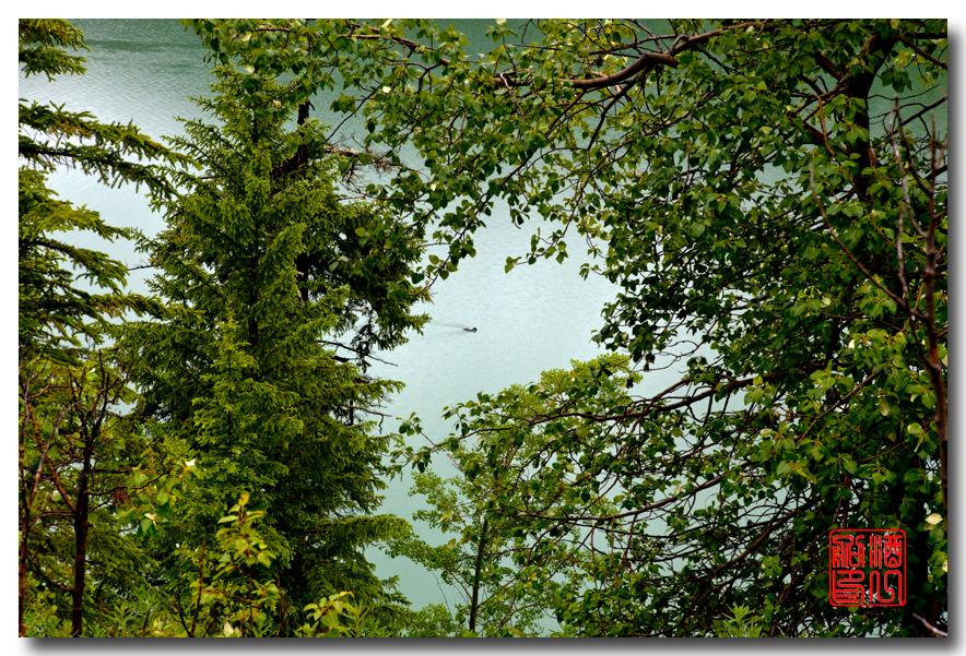 《酒一船》:湖光山色落基行:魔奇湖畔雨纷纷_图1-9
