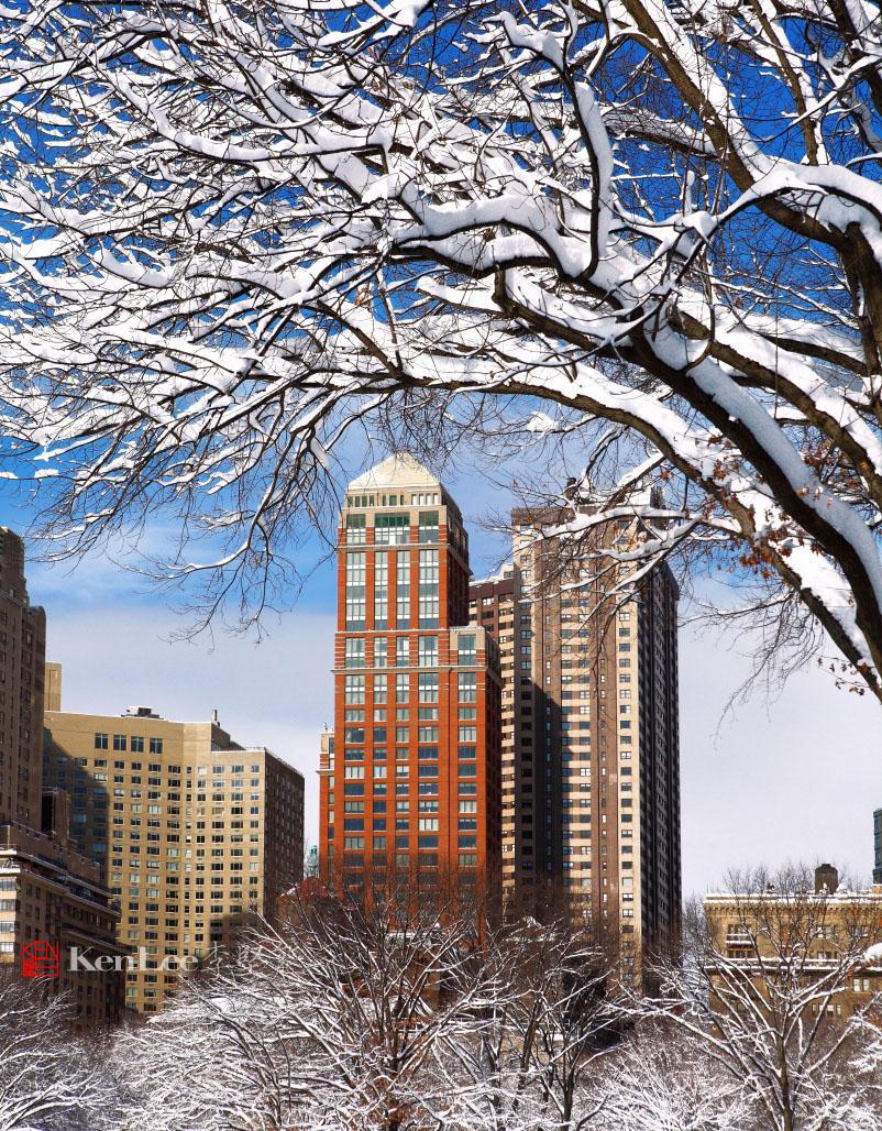 雪后美丽的树挂_图1-5