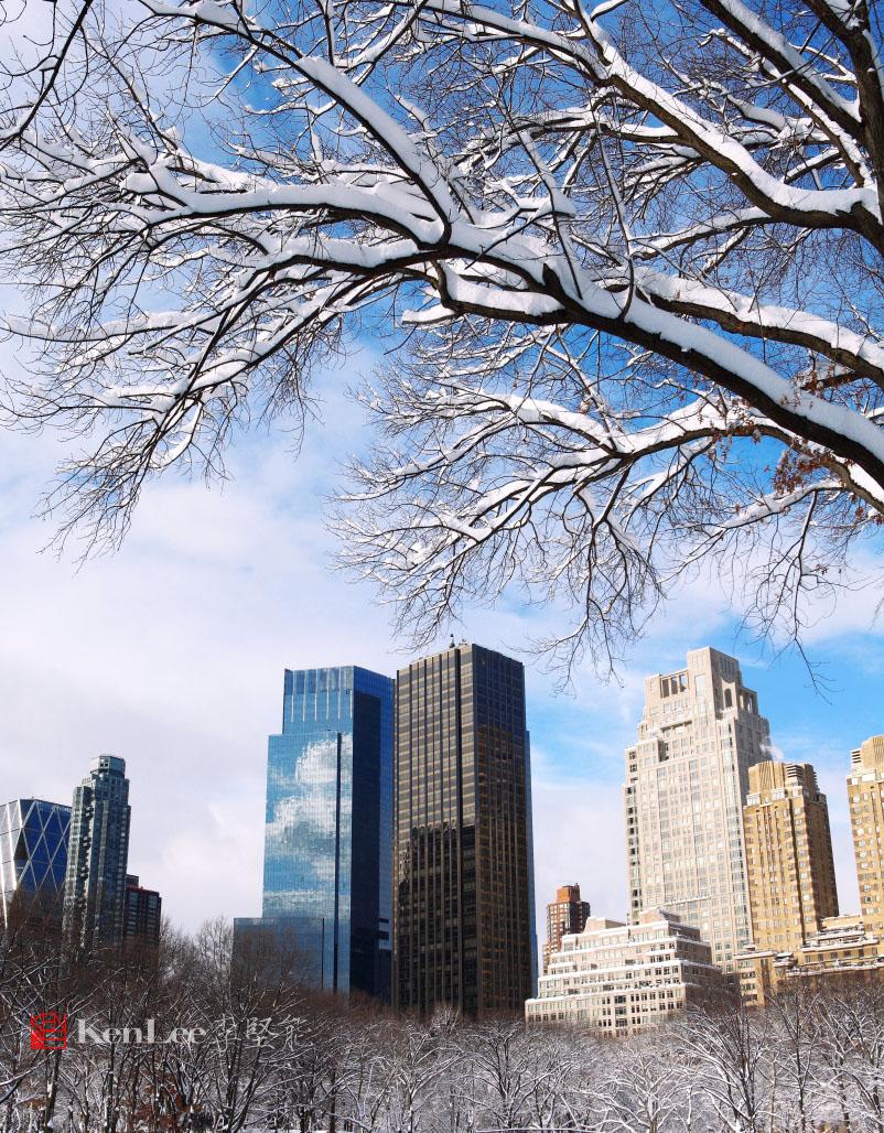 雪后美丽的树挂_图1-6
