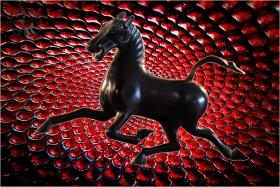 【相机人生】(430)骏马奔腾,玻璃视觉