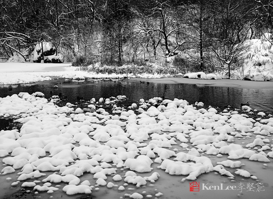 黑白雪景_图1-1