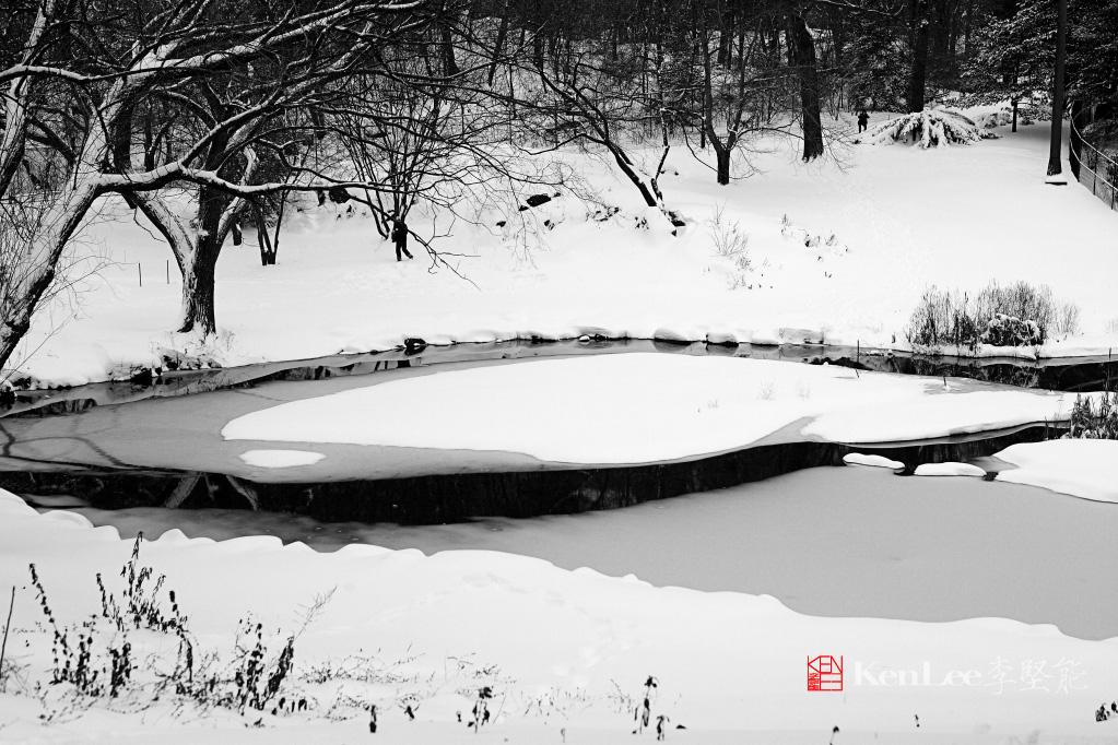 黑白雪景_图1-3
