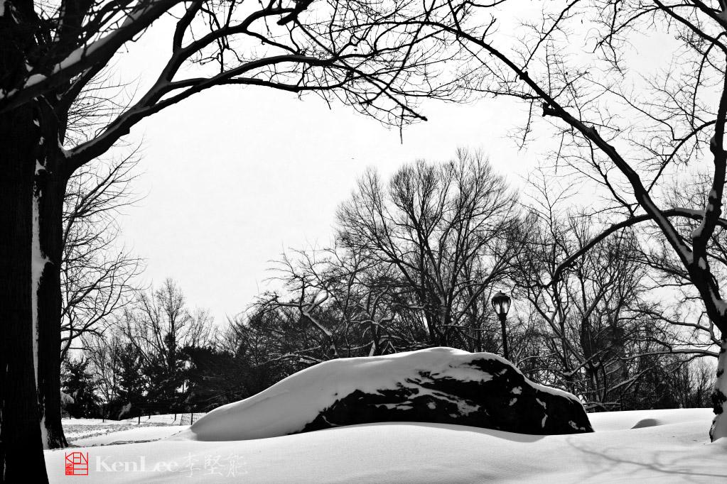 黑白雪景_图1-4