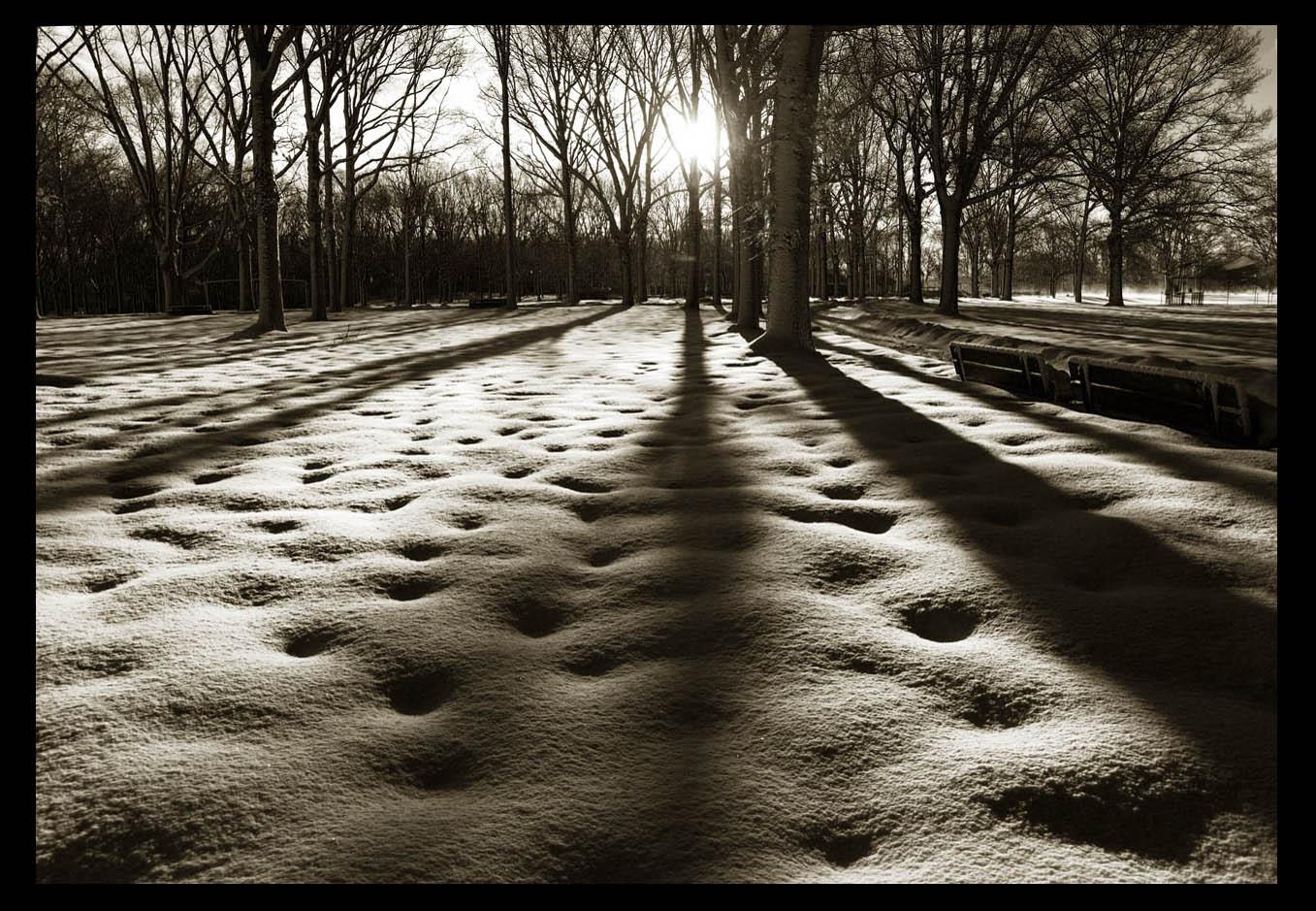 走-拍  公园雪景_图1-1